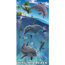 Virginia Beach Island Dolphins