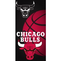 Chicago Bulls Ball